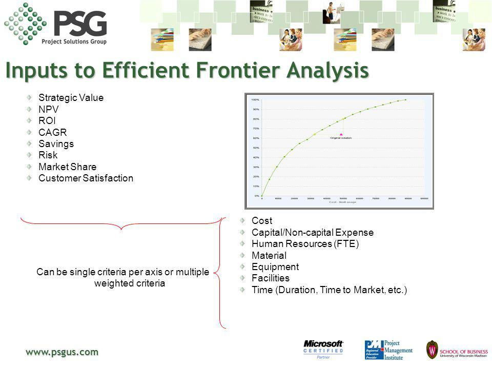 Inputs to Efficient Frontier Analysis
