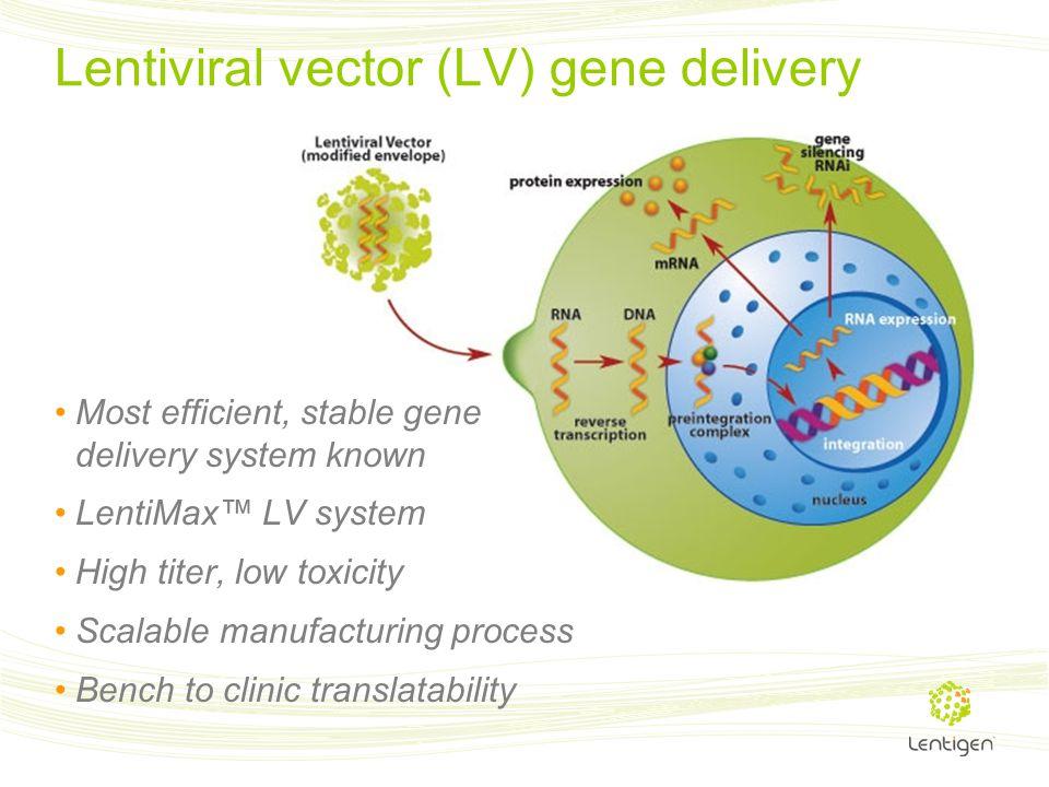 Lentiviral vector (LV) gene delivery