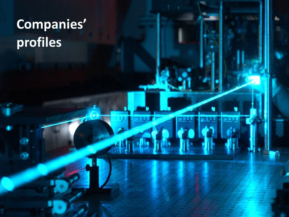 Companies' profiles