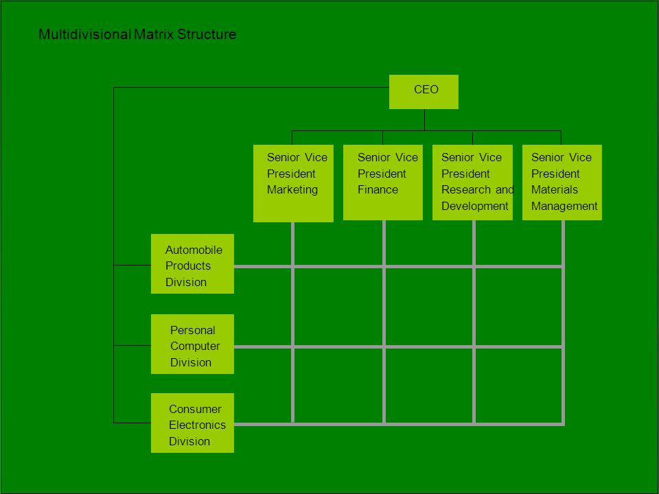 Multidivisional Matrix Structure