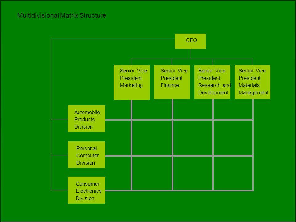 Multidivisional Matrix Structure