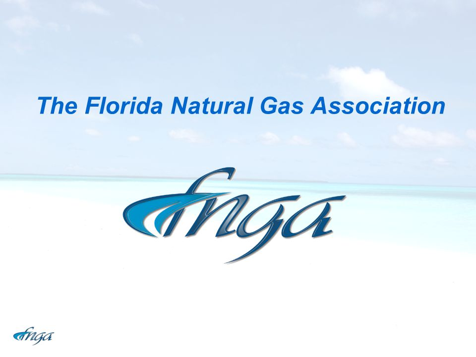 The Florida Natural Gas Association