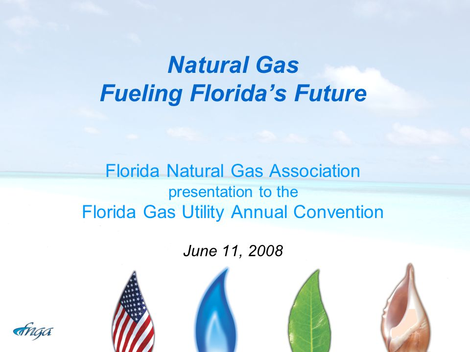 Natural Gas Fueling Florida's Future Florida Natural Gas Association presentation to the Florida Gas Utility Annual Convention June 11, 2008