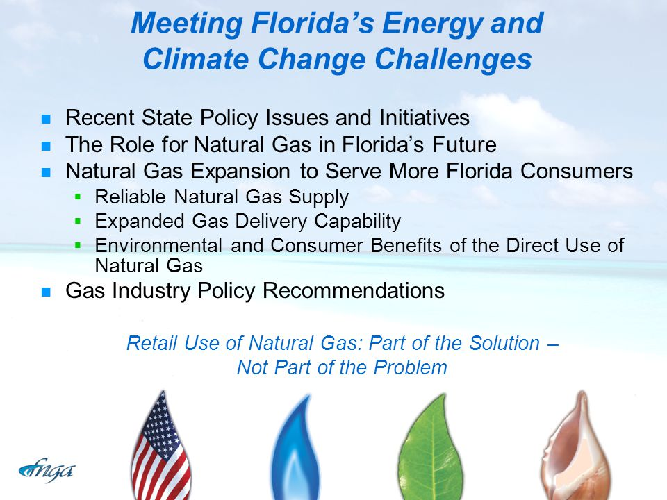 Meeting Florida's Energy and Climate Change Challenges