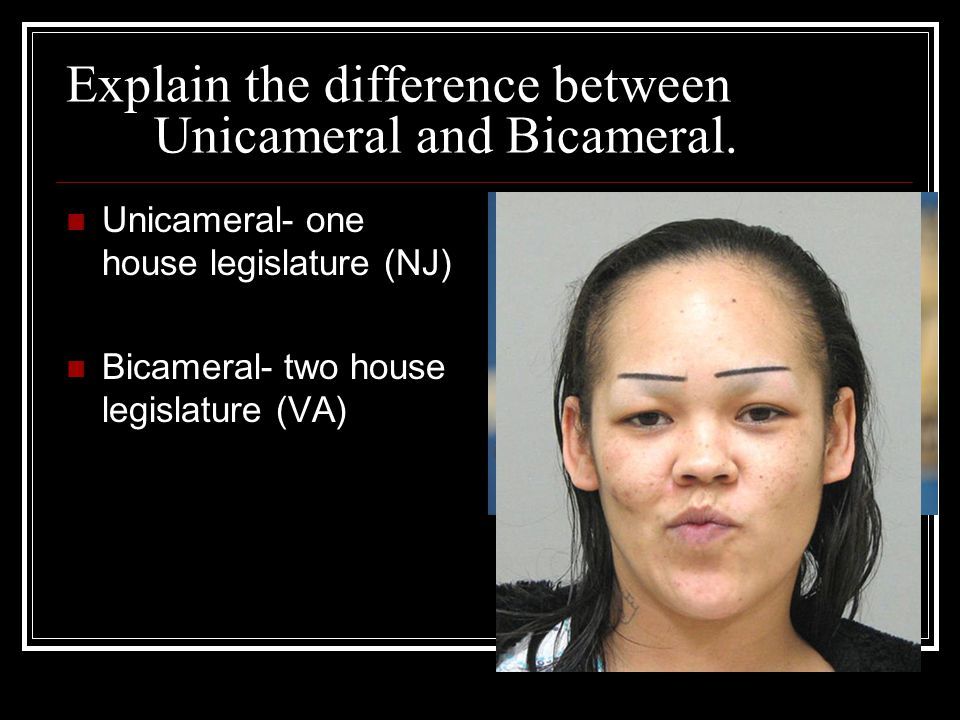 Explain the difference between Unicameral and Bicameral.