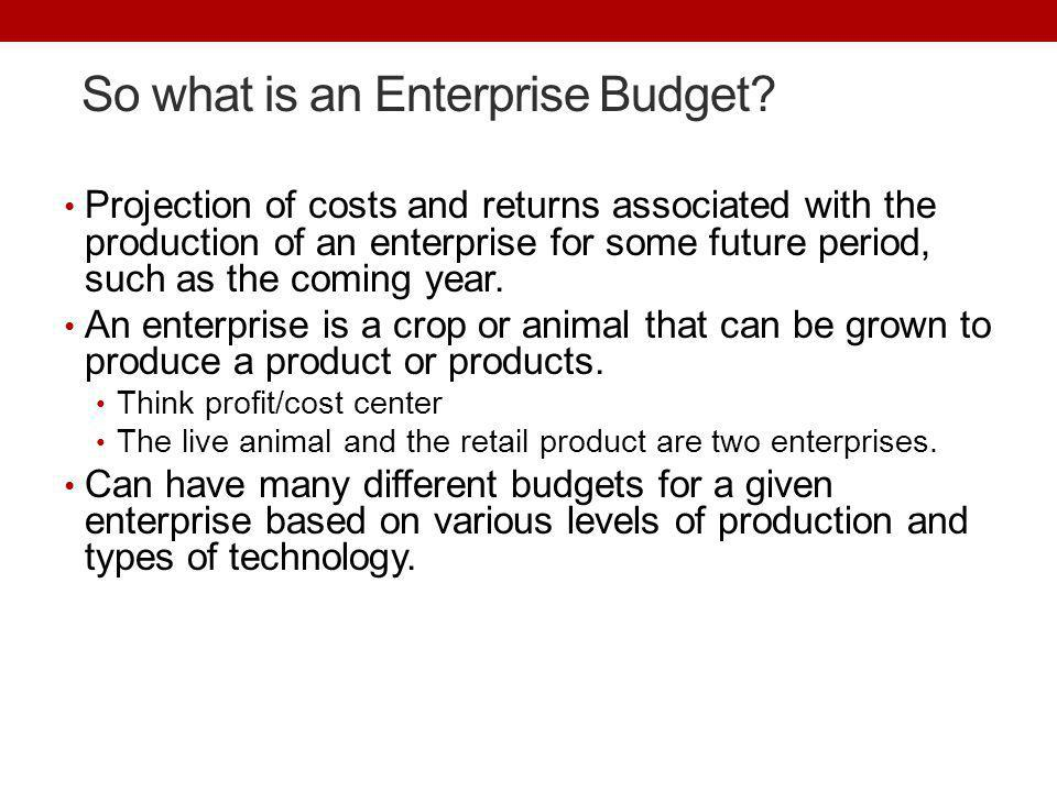 So what is an Enterprise Budget