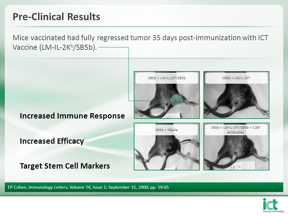 SB5b + LM-IL-2Kb/SB5b + CD8+ antibodies