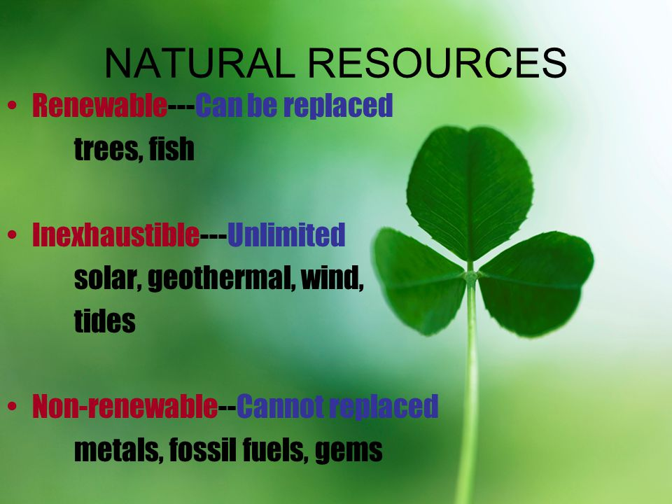NATURAL RESOURCES Renewable---Can be replaced trees, fish