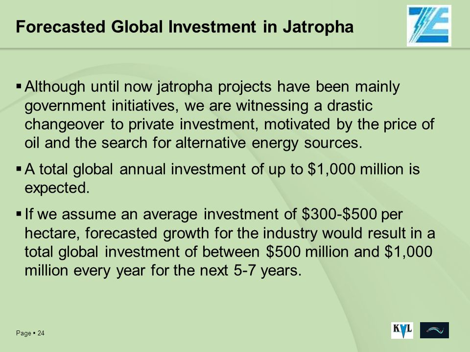 Forecasted Global Investment in Jatropha