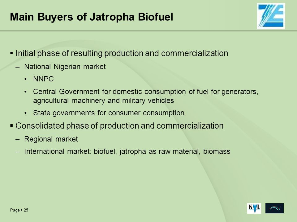 Main Buyers of Jatropha Biofuel