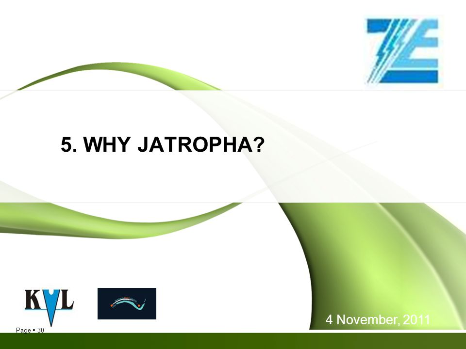 5. WHY JATROPHA 4 November, 2011 30