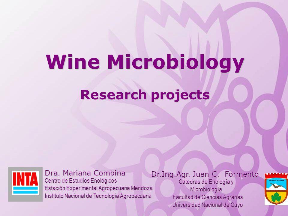Cátedras de Enología y Microbiología