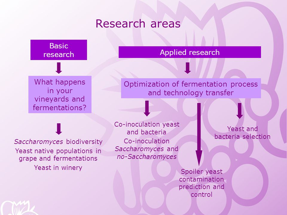Research areas Basic research Applied research