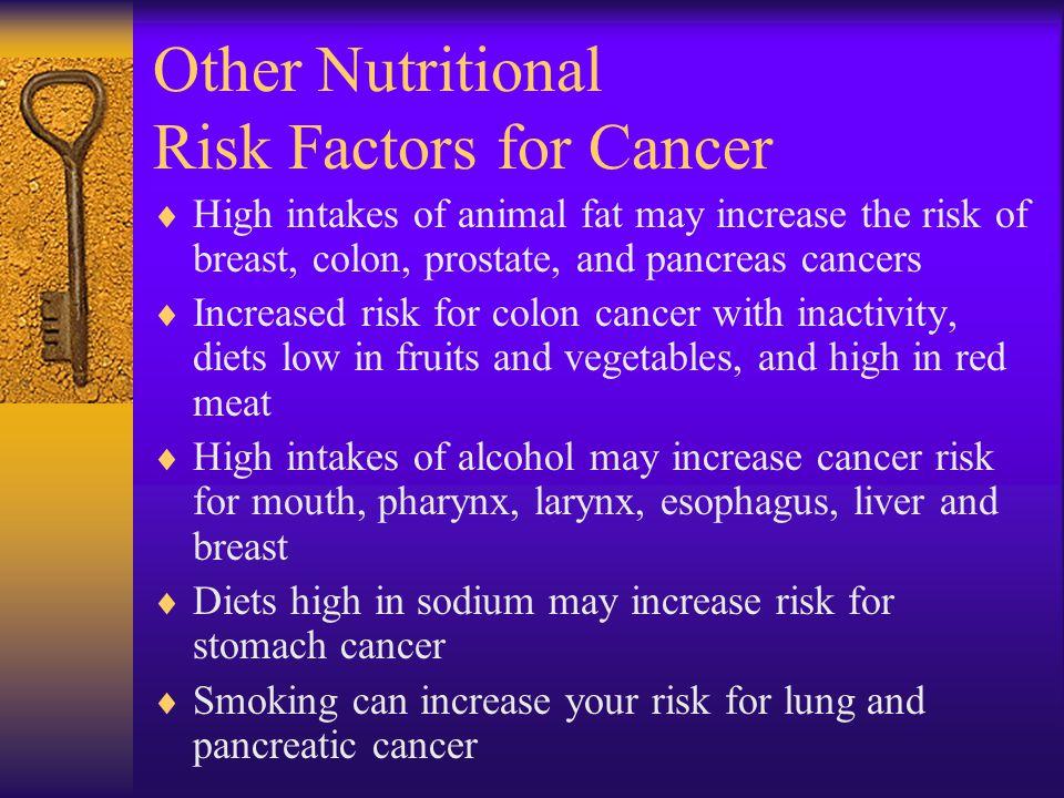 Other Nutritional Risk Factors for Cancer