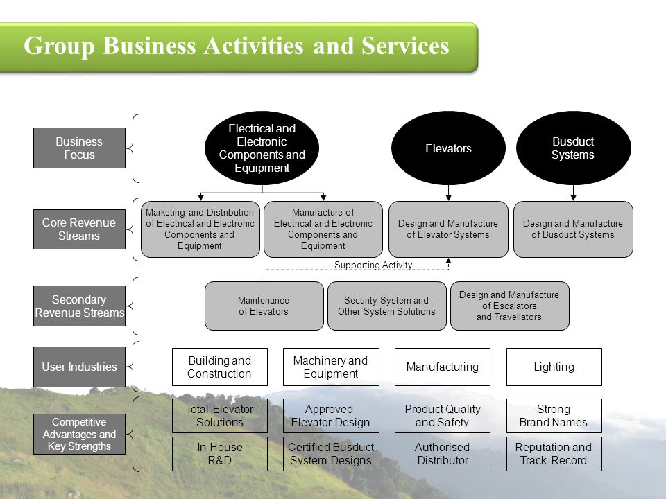 Group Business Activities and Services