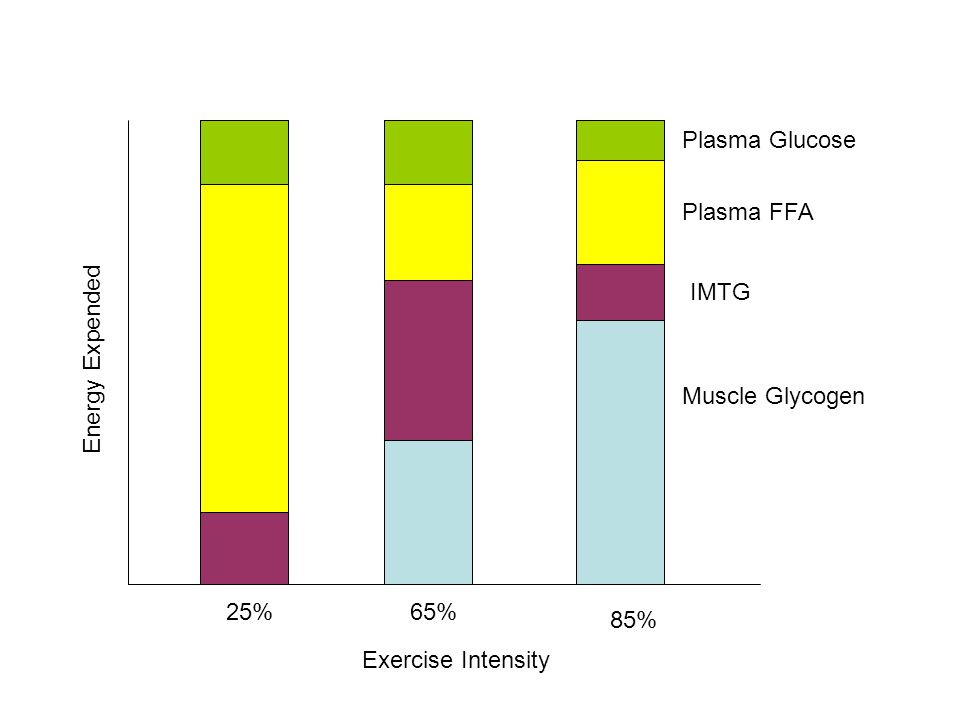 Plasma Glucose Plasma FFA IMTG Energy Expended Muscle Glycogen 25% 65% 85% Exercise Intensity