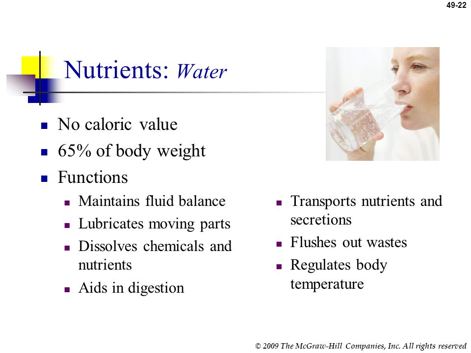Nutrients: Water No caloric value 65% of body weight Functions