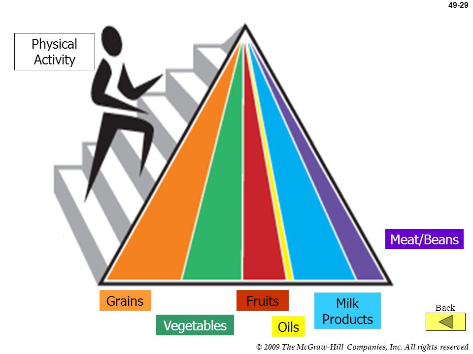 Physical Activity Meat/Beans Grains Fruits Milk Products Vegetables