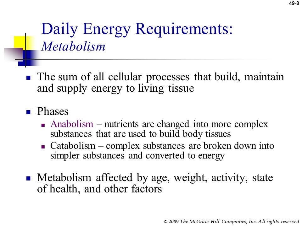 Daily Energy Requirements: Metabolism