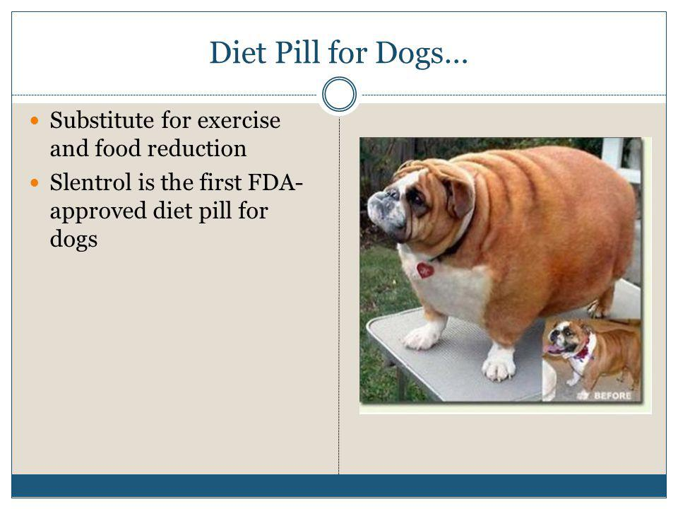 Diet pills that work south africa image 7