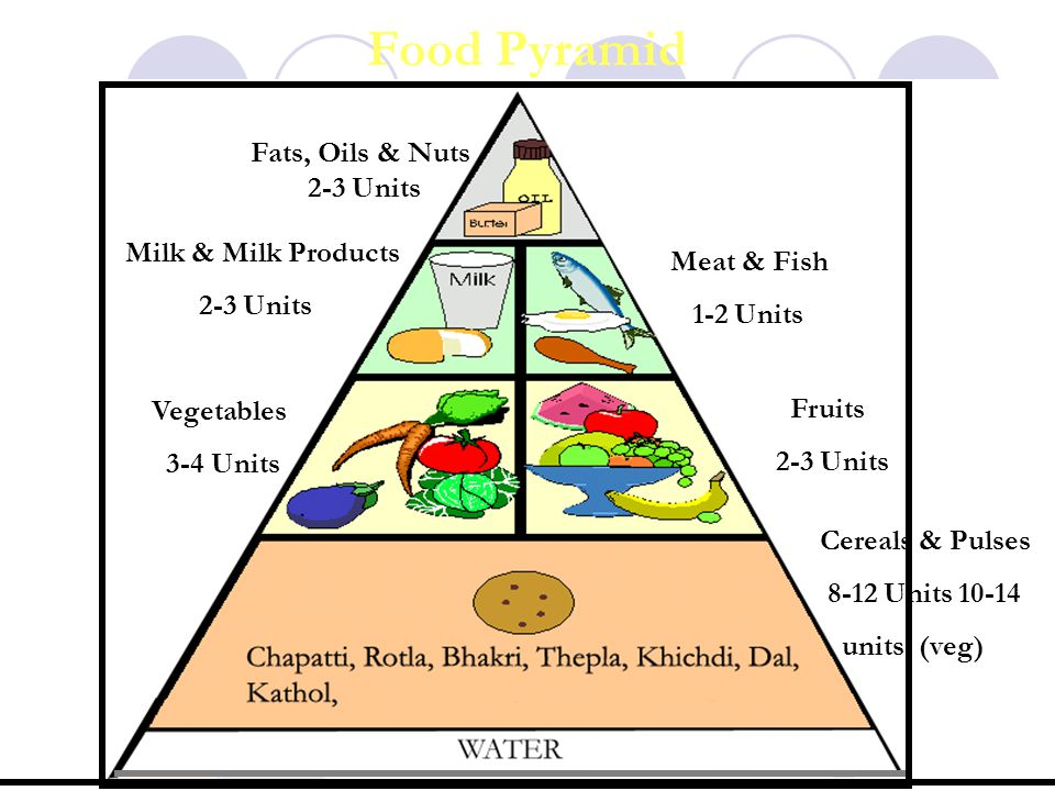 Food Pyramid Fats, Oils & Nuts 2-3 Units Milk & Milk Products