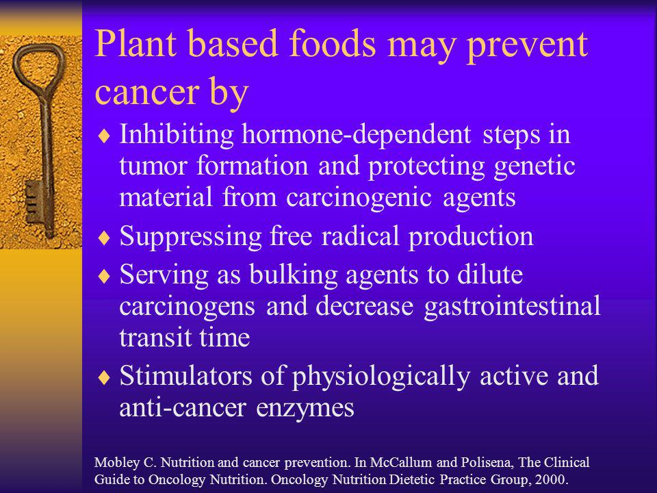 Plant based foods may prevent cancer by