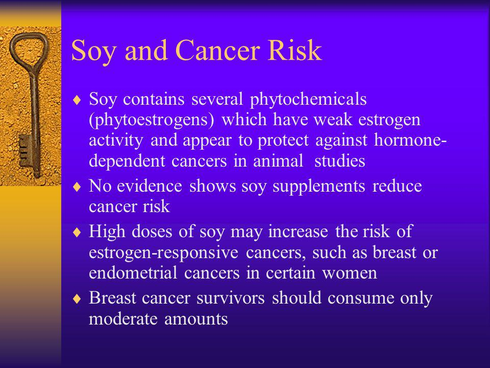 Soy and Cancer Risk