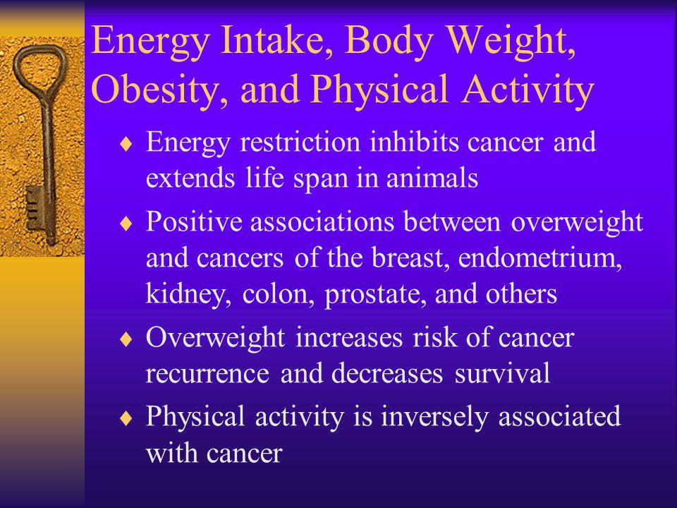 Energy Intake, Body Weight, Obesity, and Physical Activity