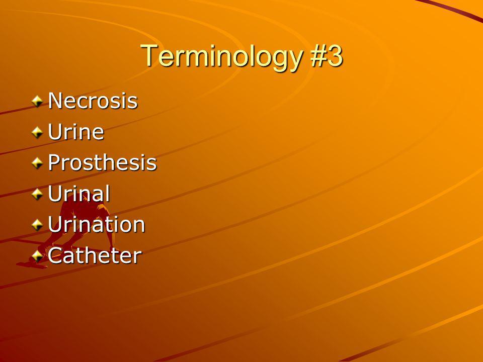 Terminology #3 Necrosis Urine Prosthesis Urinal Urination Catheter