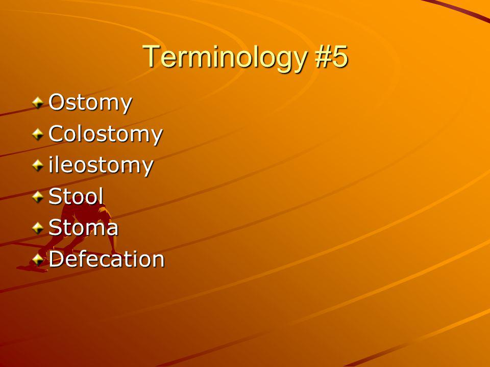 Terminology #5 Ostomy Colostomy ileostomy Stool Stoma Defecation