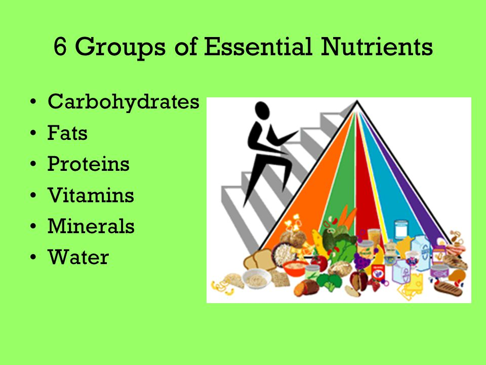 6 Groups of Essential Nutrients