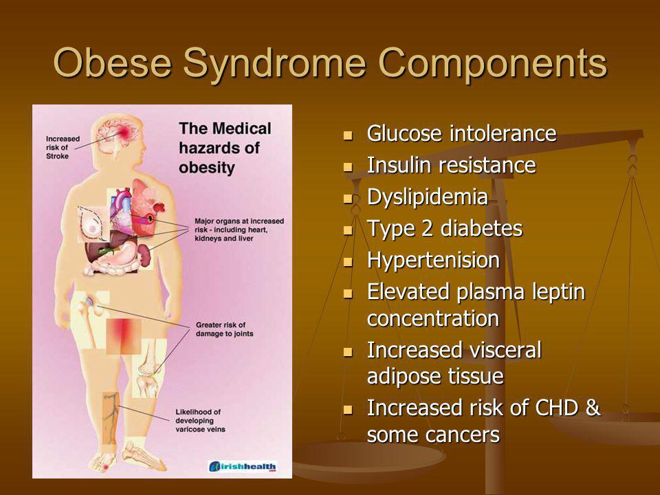 Obese Syndrome Components