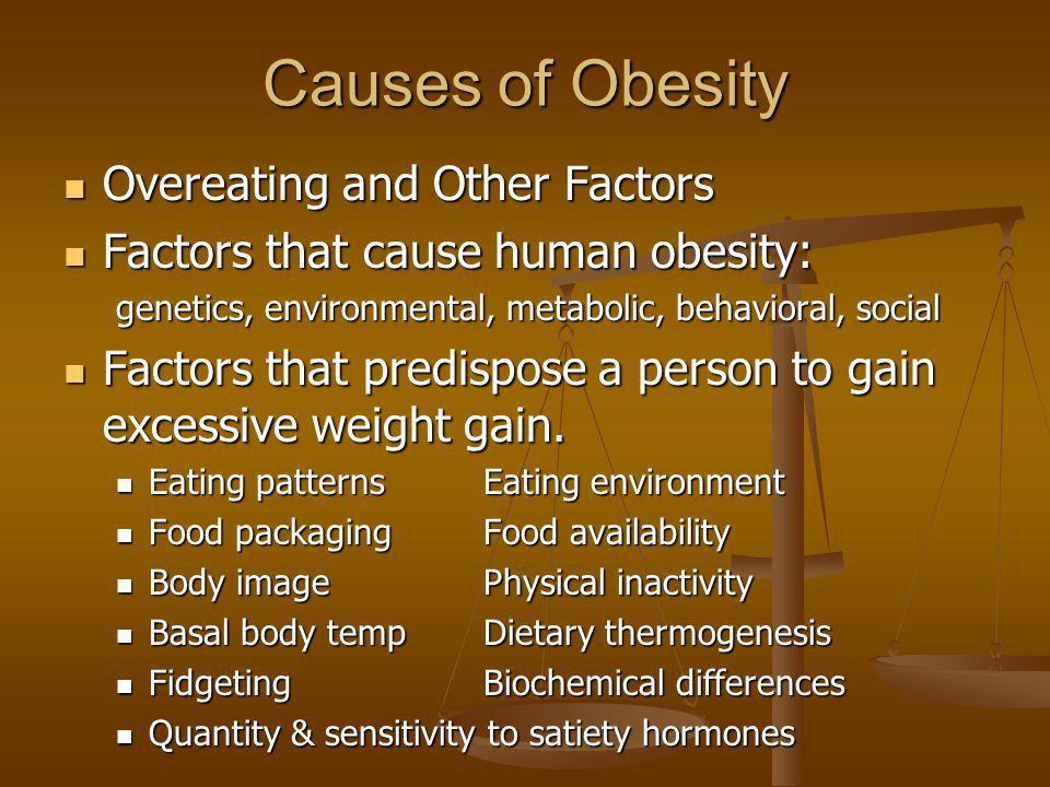 Causes of Obesity Overeating and Other Factors