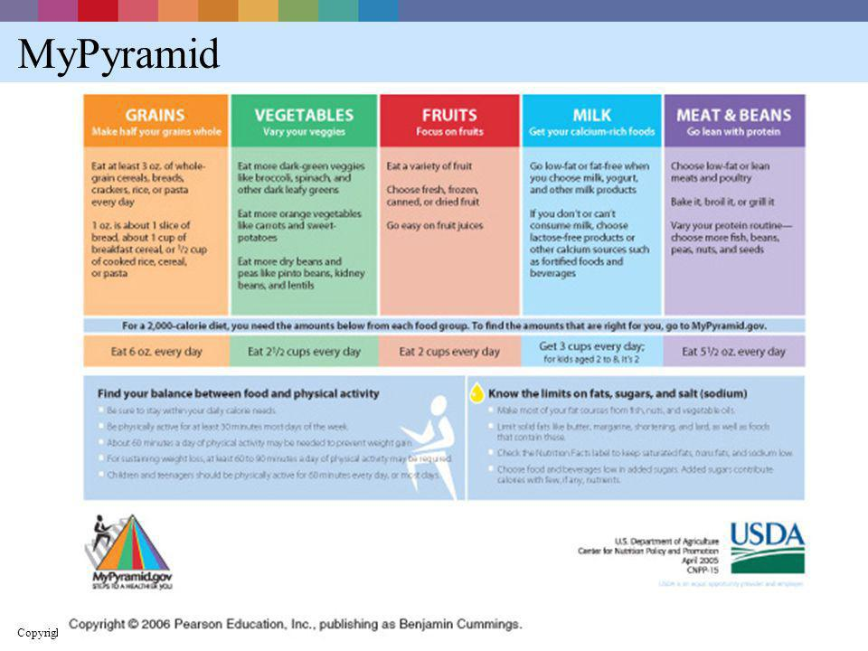 MyPyramid Copyright © 2005 Pearson Education, Inc., publishing as Benjamin Cummings