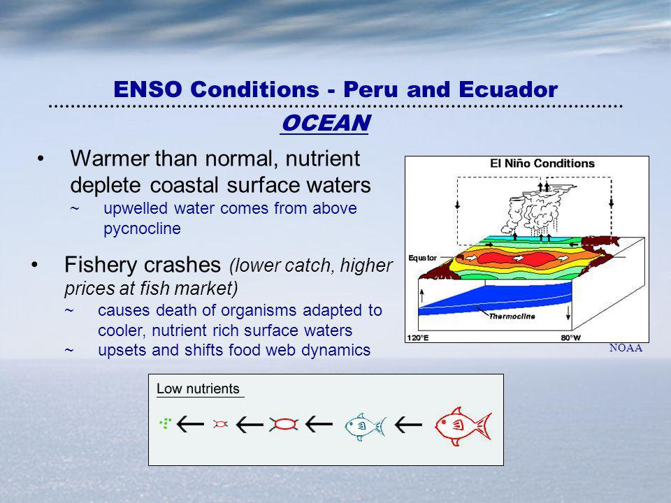 ENSO Conditions - Peru and Ecuador