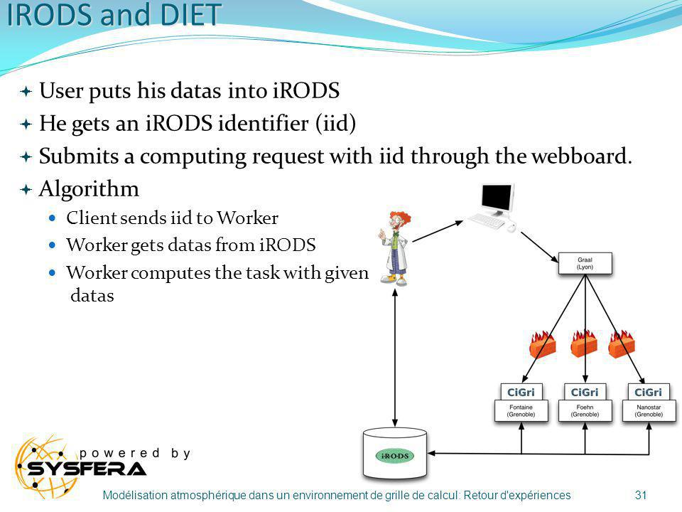 IRODS and DIET User puts his datas into iRODS