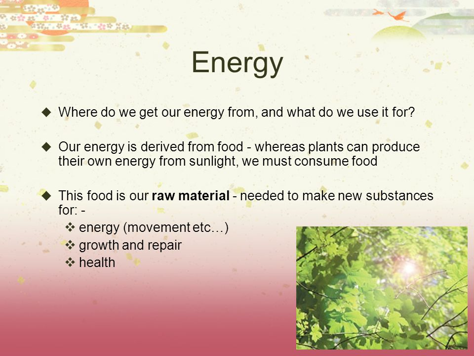 Healthy diet noadswood science ppt video online download for What do we use trees for