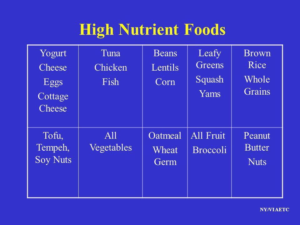 High Nutrient Foods Yogurt Cheese Eggs Cottage Cheese Tuna Chicken
