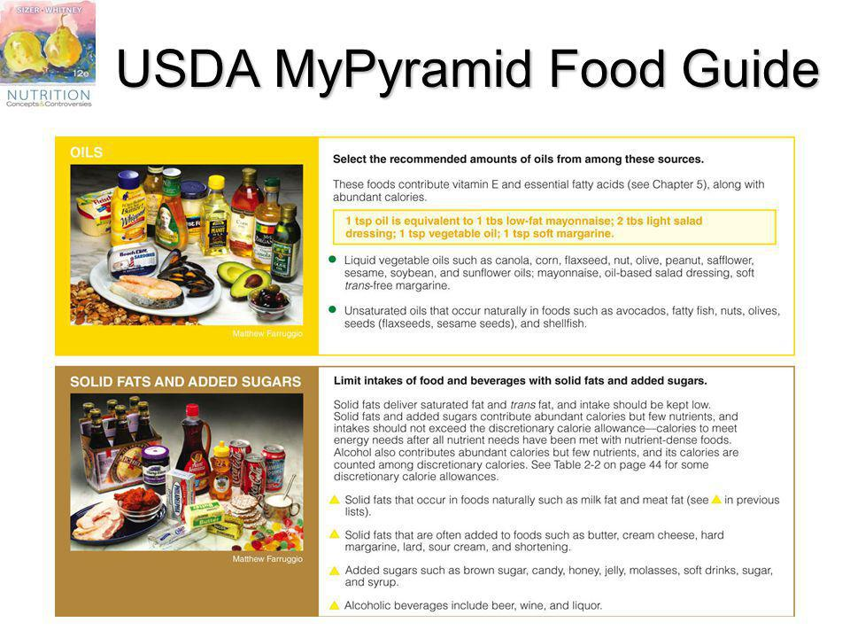 USDA MyPyramid Food Guide