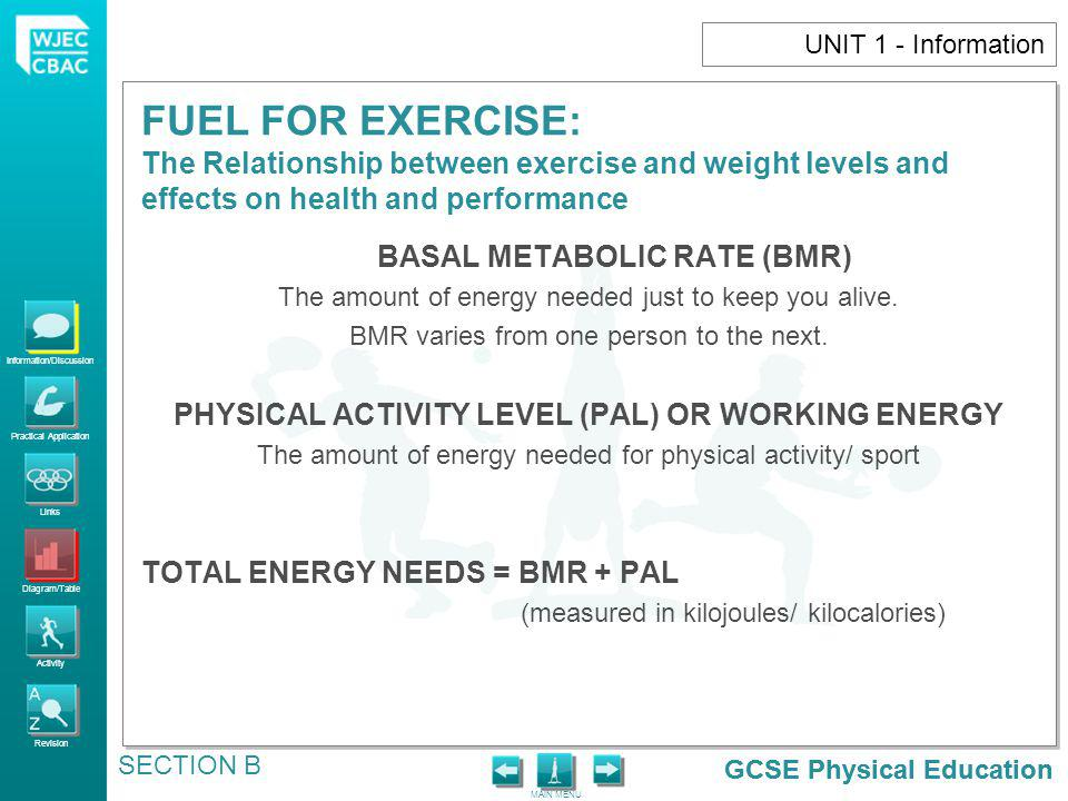 PHYSICAL ACTIVITY LEVEL (PAL) OR WORKING ENERGY