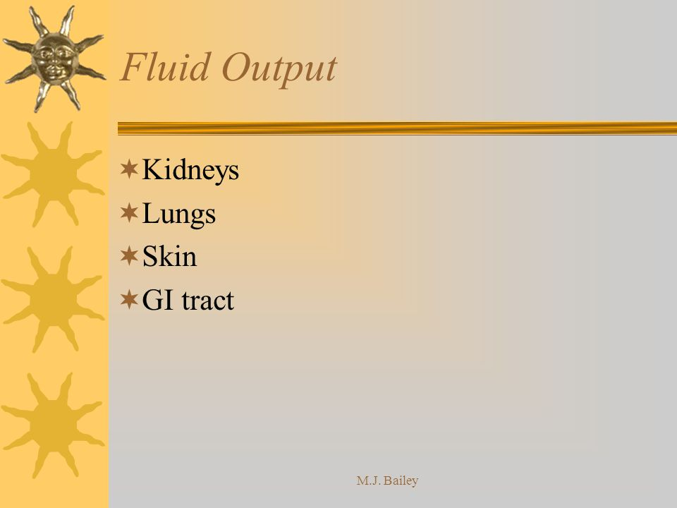 Fluid Output Kidneys Lungs Skin GI tract M.J. Bailey