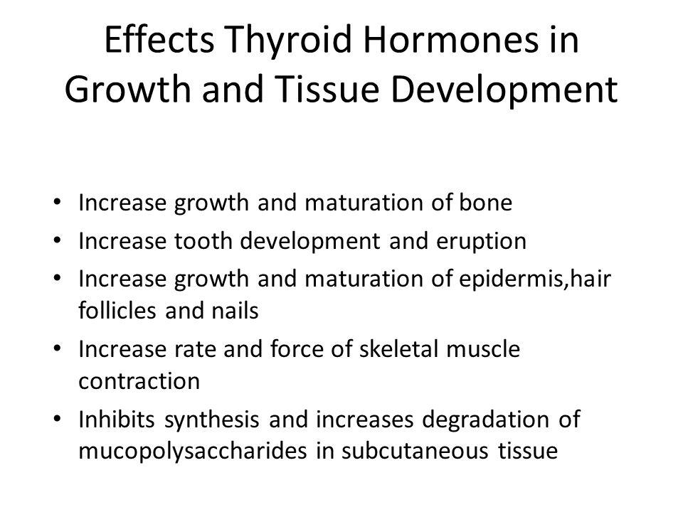 Effects Thyroid Hormones in Growth and Tissue Development