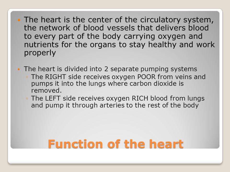 The heart is the center of the circulatory system, the network of blood vessels that delivers blood to every part of the body carrying oxygen and nutrients for the organs to stay healthy and work properly