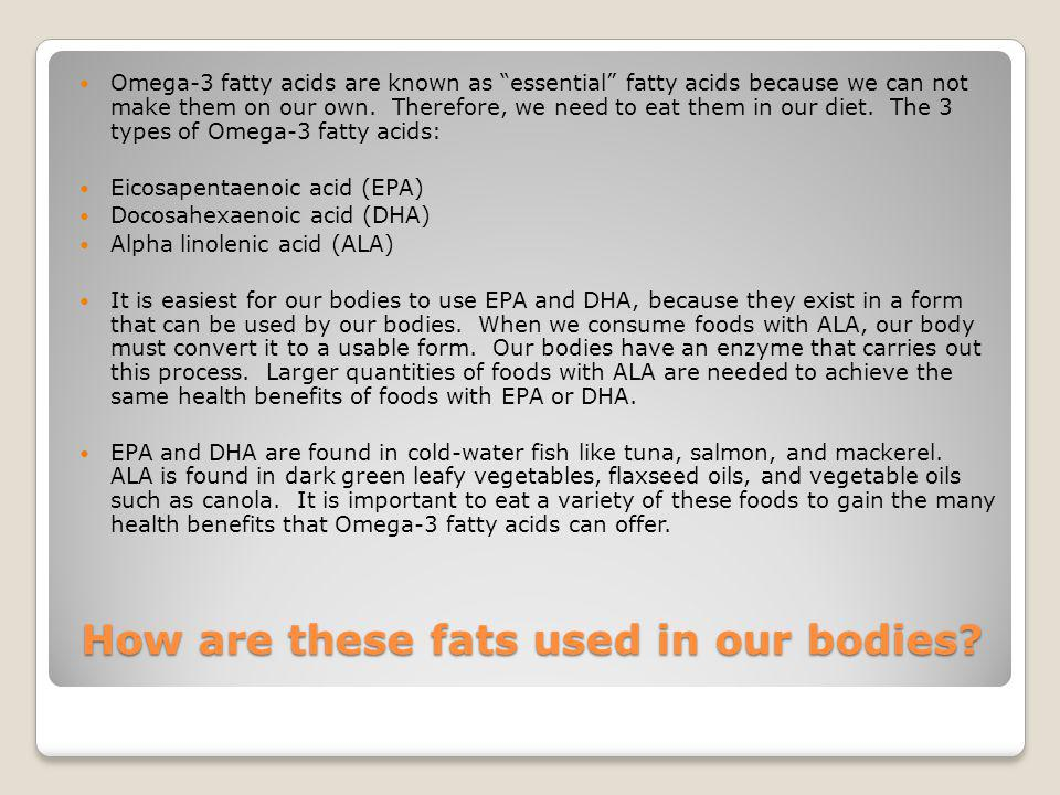 How are these fats used in our bodies