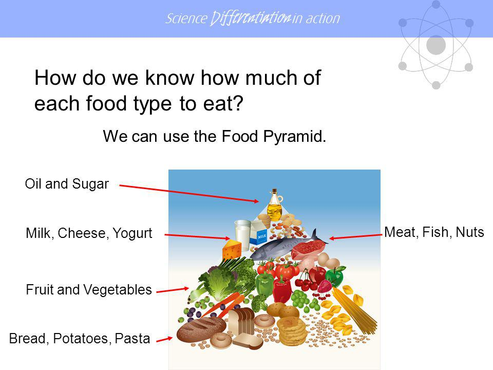 We can use the Food Pyramid.