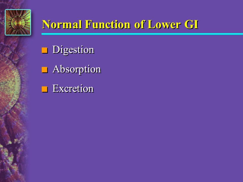 Normal Function of Lower GI