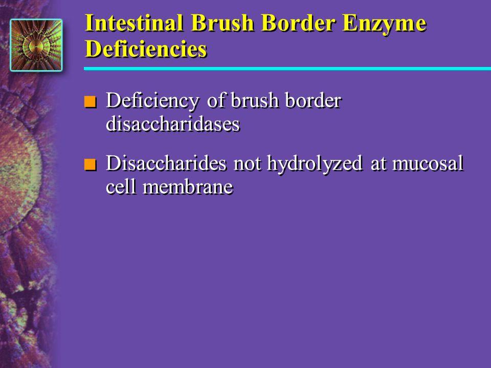 Intestinal Brush Border Enzyme Deficiencies