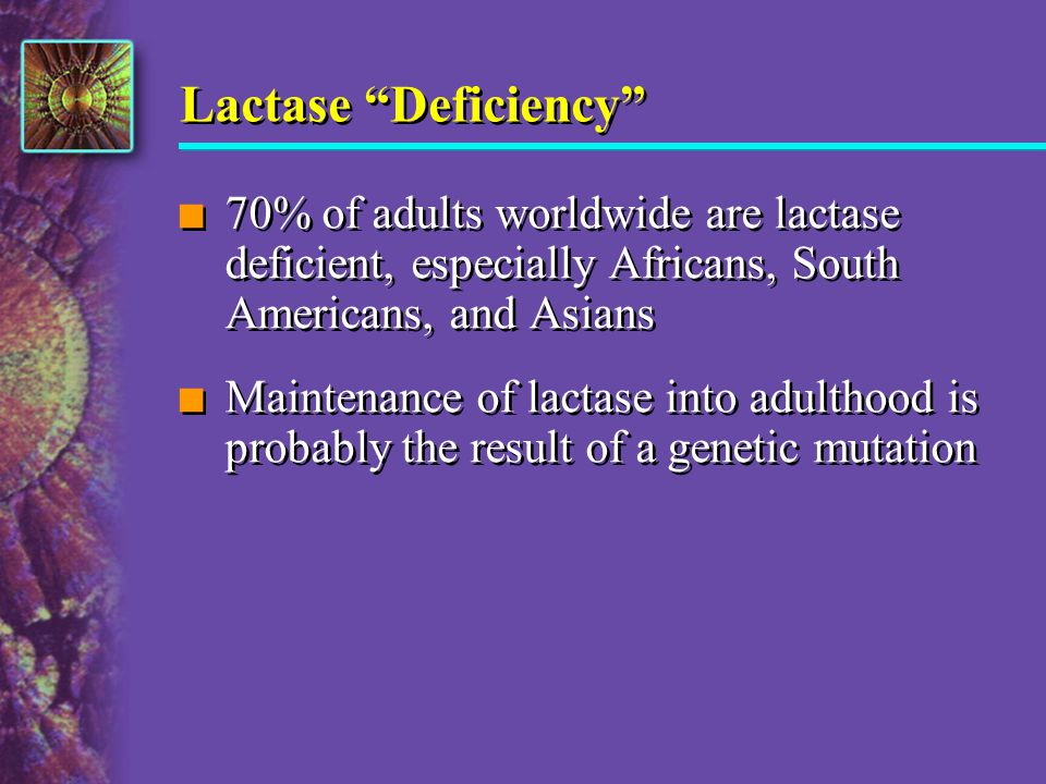 Lactase Deficiency 70% of adults worldwide are lactase deficient, especially Africans, South Americans, and Asians.
