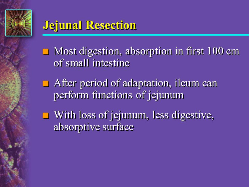Jejunal Resection Most digestion, absorption in first 100 cm of small intestine.