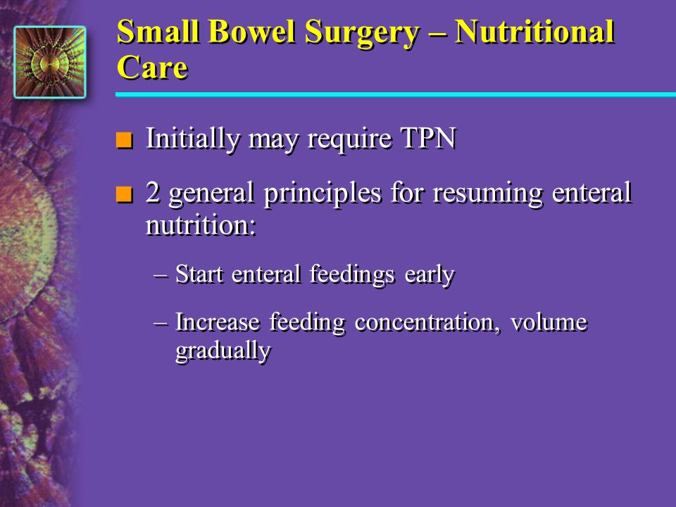 Small Bowel Surgery – Nutritional Care